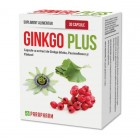 Ginkgo plus, 30 capsules